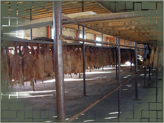 image of our drying warehouses